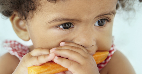 your-toddlers-nutrition