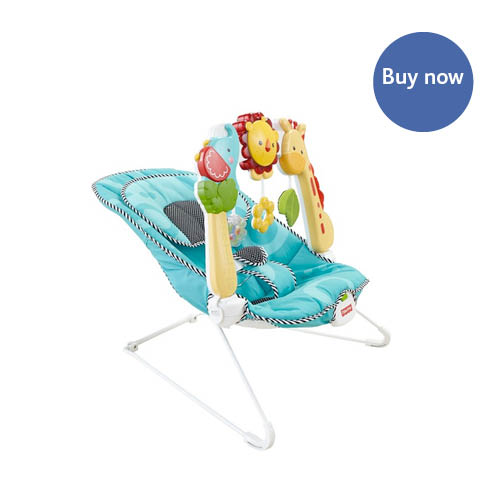 Fisher Price – 2-in-1 Sensory Stages Bouncer