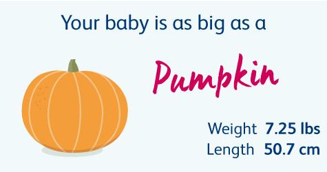 39 Weeks Pregnant | Your Pregnancy Week-by-Week | Bounty
