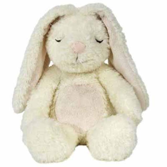 cloud-b-bunny-image
