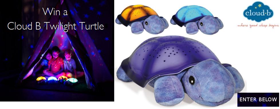 Win a Cloud B Twilight Turtle