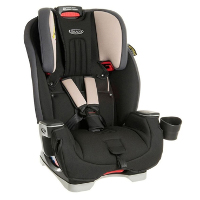 Grace Milestone combination car seat