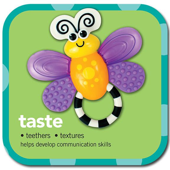 taste •teethers • textures • helps develop communication skills