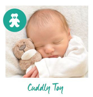 Cuddly toy image
