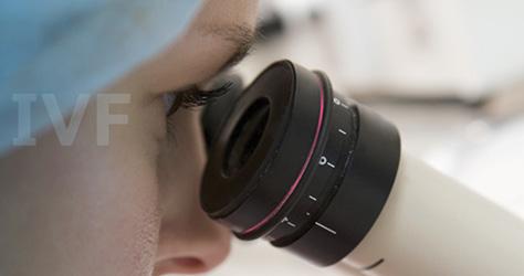 What is In Vitro Fertilisation (IVF)? | Bounty