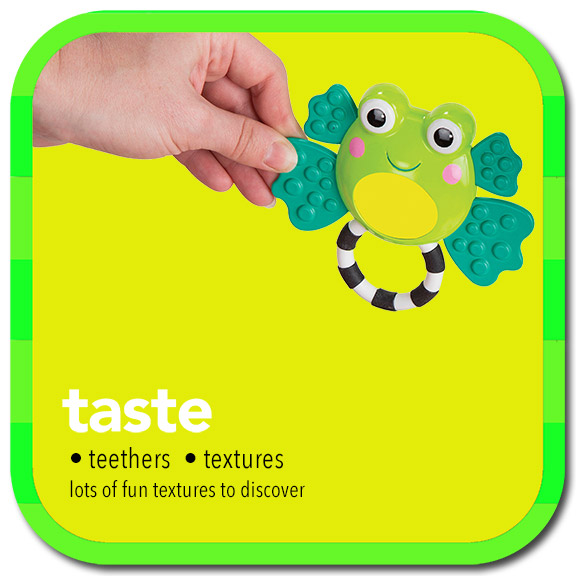 taste • teethers • textures • lots of fun textures to discover