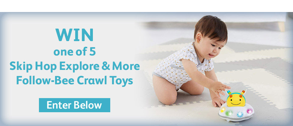 Win Follow Bee Crawl Toy