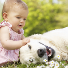 babies-and-pets-sq