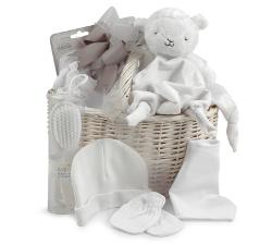 Newborn gift basket 250