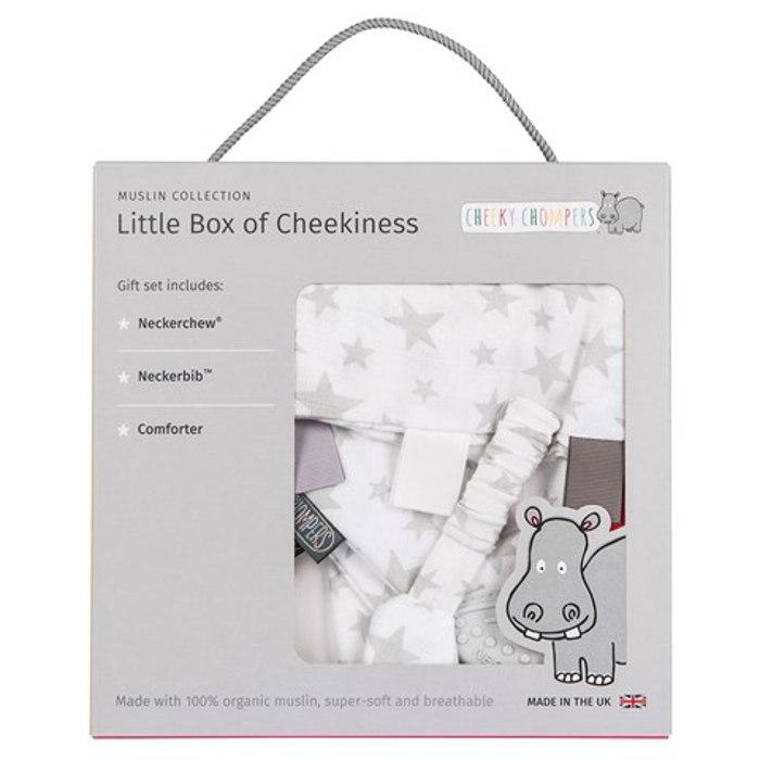 Silver Stars Box of Cheekiness