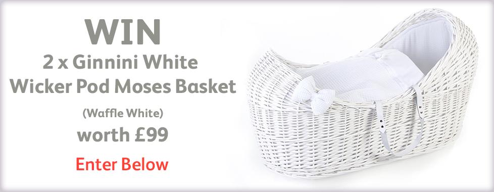 Win Ginnini White Wicker Pod Moses Basket