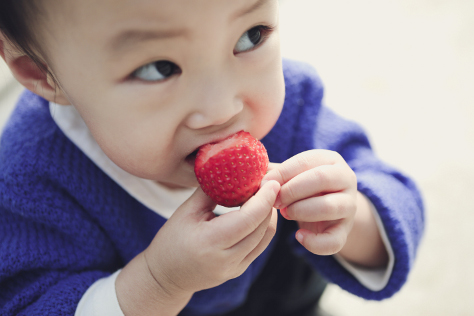 Common concerns for baby led weaning 474