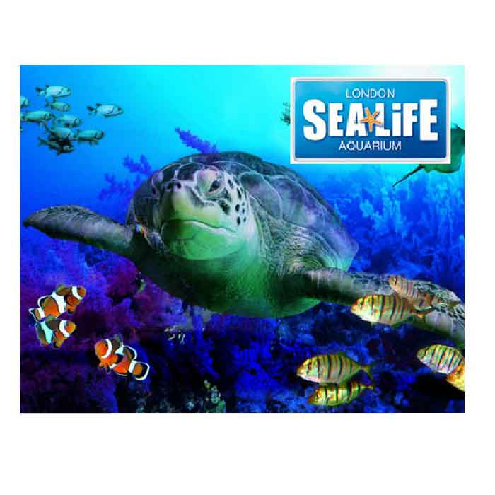 sealife-londonaquarium