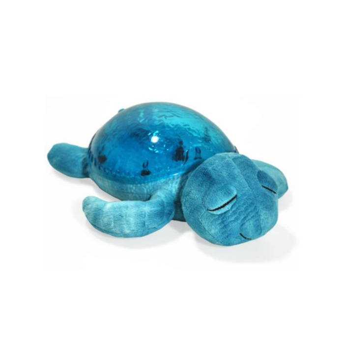 tranquil-turtle